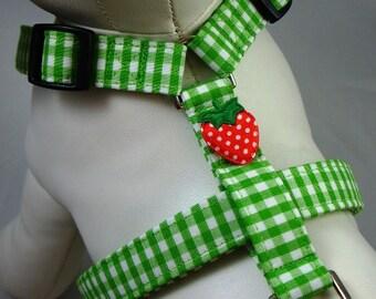 Dog Harness - Green Gingham