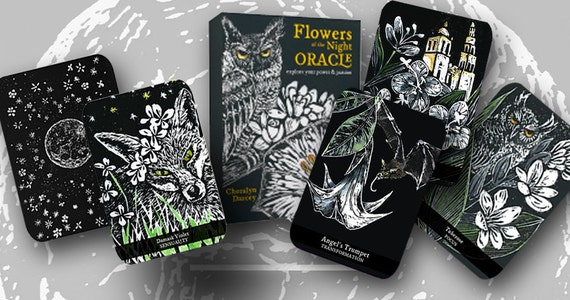 PRE ORDER Flowers of the Night Oracle Deck 2017 New Edition