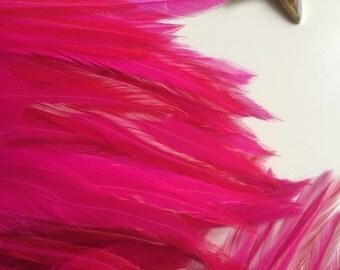 BELLA COQUE SADDLE / Hot Pink, Fuchsia  /  658
