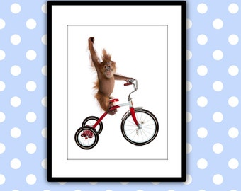 Print for childrens wall art, signed by artist, photography collage, monkey on bike 8x10 matted.