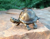 Small bronze box turtle with removable shell sculpture