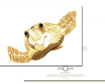 Loggerhead Sea Turtle 5x7 Portrait Card with Envelope