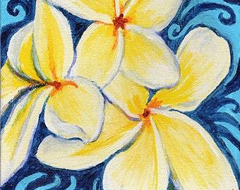 "Hawaii Plumeria Wall Art, Original Floral Painting, 6x6"""
