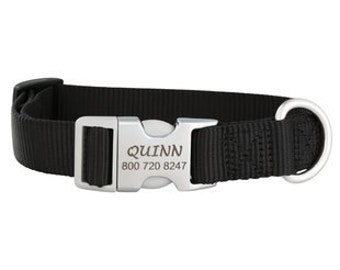 Metal Quick Release Engraved Martingale Dog Collar