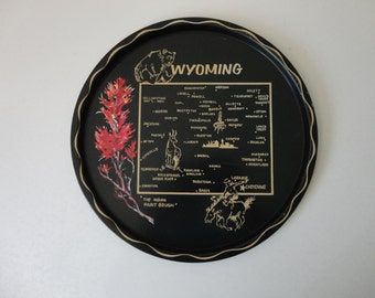 VINTAGE wyoming TRAY for cocktails or wall hanging