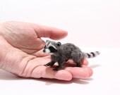 OOAK Realistic Miniature Raccoon - by Malga