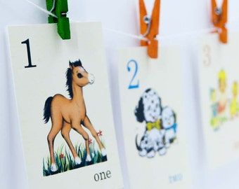 Counting from 1-15 Flash Cards | Set of 15 | Choose your Size