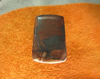 Indian Paint jasper freeform cabochon