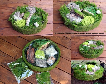 "DIY Fairy Garden Kit-15"" diameter with tree bark-Spanish Moss-Preserved Reindeer moss & More"