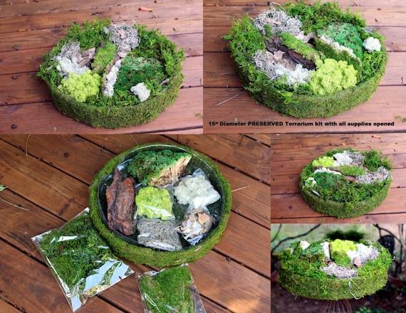 Diy fairy garden kit 15 diameter with tree bark spanish for Fairy garden kits