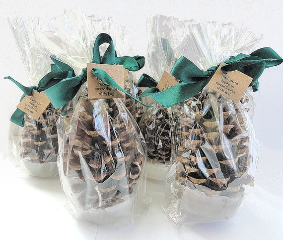 Giveaways For Christmas Party: 100 Pine Cone Fire Starter Corporate Christmas Party Favors