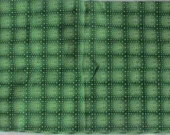 Green Circles Fabric - 3/4 yd - In the Beginning Fabric - Jason Yenter
