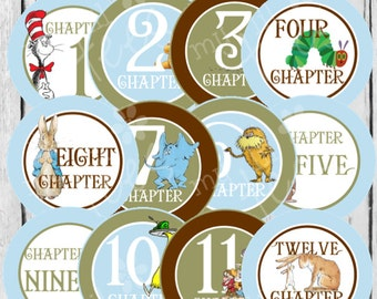 MONTHLY IRON ONS Decals or Monthly Stickers- 12 Monthly iron on heat transfers - for Baby - Story Book(Style#C12)