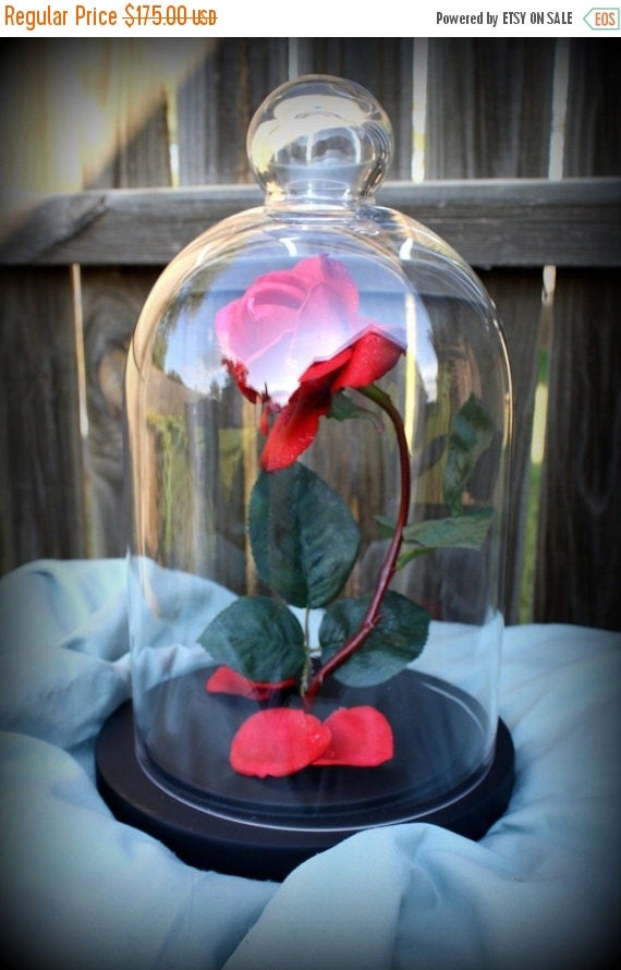 Sale Beauty Beast Enchanted Rose Dome Life By Christalinasales