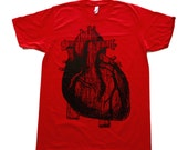 Anatomically Correct Heart Illustration TShirt - American Apparel - red - Available in XS, S, M, L and Xl