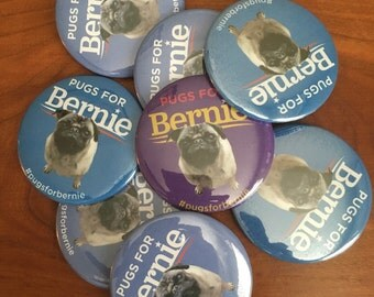 "Pugs For Bernie - Bernie Sanders 2 1/4"" button"