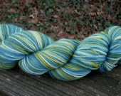 Superwash Blue Green Variegated--Light Worsted Wool--4 Ounces--250 Plus Yards--Plant Dyed