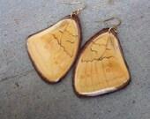 Big Leather Real Butterfly Moth Earrings, Bohemian Jewelry, Boho Gypsy, OOAK, Gift, Handmade