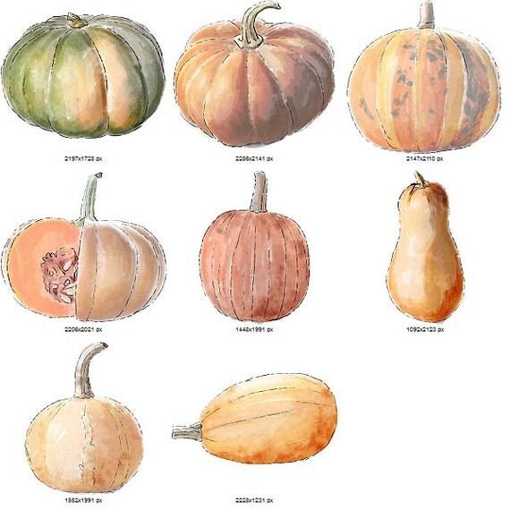 Pumpkins hand drawn downloadable digital scrapbook kit