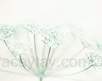 Pastel Decor, Mint Green, White, Cream, Flower Photography, Pale, Bedroom Wall Art,
