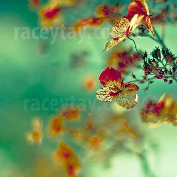 Surreal Flower Photography, Green, Gold, Rust Red, Shabby Chic, Hydrangea Print, Romantic Decor