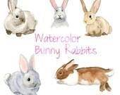 Watercolor Bunnies, Bunny Rabbit Clip Art, Nature clipart, Forest Clip Art, Wild Animals,  Fauna Clipart, Animal Art