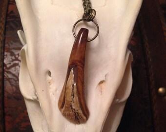 Antique Buffalo Tooth Pendant