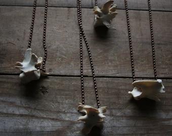 Raccoon Vertebrae - antiqued copper ball chain