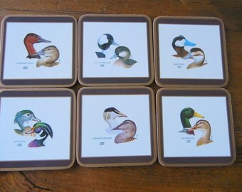 Pimpernel Deluxe Coasters Set of 6 with illustrations of Ducks Cork Back Made in England Sportsman Gift Original Box