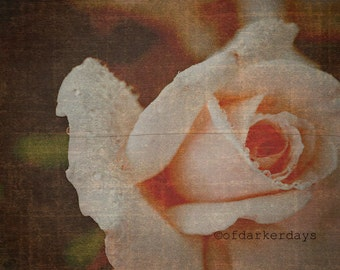 Rose Print-Rustic Art-Vintage Inspired-Pink Wall Art-Distressed Art-Floral Wall Decor-Horizontal Print-Fine Art Photography-16x20 Wall Print