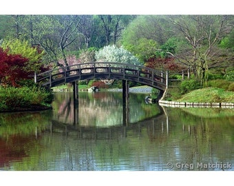 Fine Art Color Landscape Photography of Bridge in Springtime In a Japanese Garden