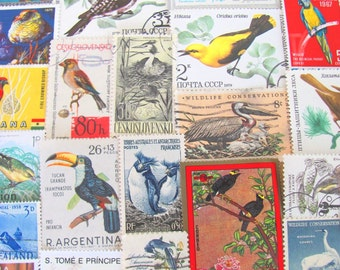 Where Eagles Dare 50 Vintage Birds Postage Stamps Ornithology Water Fowl Parrot Toucan Duck Owl Twitter Tweet Fly US Worldwide Philately