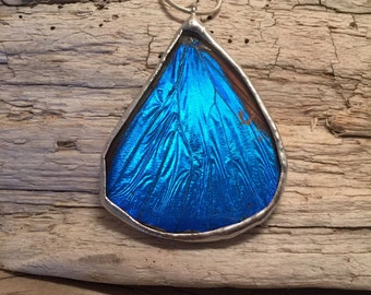 Real Butterfly jewelry, handmade butterfly pendant, real butterfly necklace, butterfly wing Necklace Blue Morpho Pendant