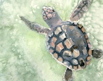 GICLEE loggerhead sea turtle art watercolor PRINT, matted 11x14