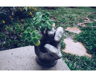 HAND MADE - Concrete Planter