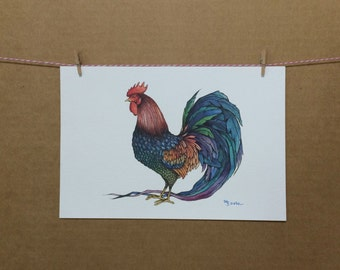 Watercolor/Ink-Animal-Rooster Extraordinaire