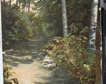 Postcard mountain path Franklin New Hampshire 1908