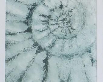 Original etching print ammonite fossil spiral jurassic coast solar etching