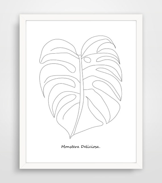 hibiscus monstera coloring pagedigital stampadult coloring printablehibiscushlrdesigns