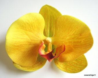 "4.5"" Yellow Fuchsia Orchid Flower Hair Clip"