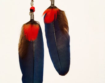 Beautiful Blue Parrot Feather Earring with Huayruro Seeds