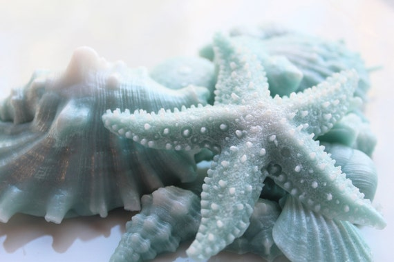 SHELL SOAP, Teal and White Opalescence Beach Shells, Shell Gift Set, Beach House Soap, Scented Soap, Custom Scented, Vegetable Based
