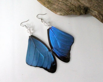 Blue Butterfly Wing Earrings with Clear Crystal Bead, Nature Earrings, Morpho Menelaus