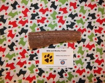 """Organic Large Elk Antler Dog Chew """"Made in Montana"""" (Lot C50)"""