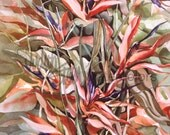 """Bird of Paradise Flowers Print, Floral, Red Orange, Yellow, Violet, Blue Green, Watercolor Painting Wall Art, Home Decor, """"Paradise, Yes"""""""