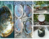 """Abalone Shell White Sage Smudge Set Incense Charcoal Discs Wood Tripod Stand Sphere Holder Blessing Bowl Sea Shell Vessel 5-6"""" Violet Blue"""