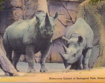 Detroit, Michigan, Zoological Park, Rhinoceros Exhibit - Linen Postcard - Unused (A4)