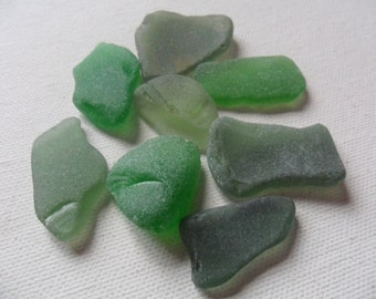 8 medium sized green sea glass - Lovely English beach find pieces