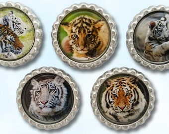 Tigers and cubs bottle cap magnets