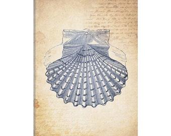 iCanvas Blue Sea III Gallery Wrapped Canvas Art Print by Natasha Westcoat